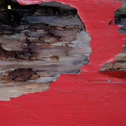 Houtrot schimmel - Houtrot reparatie